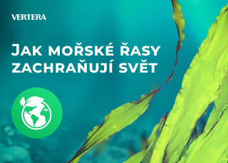 Jak mořské řasy zachraňují svět