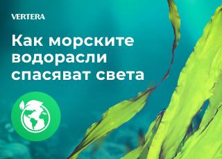 Как морските водорасли спасяват света