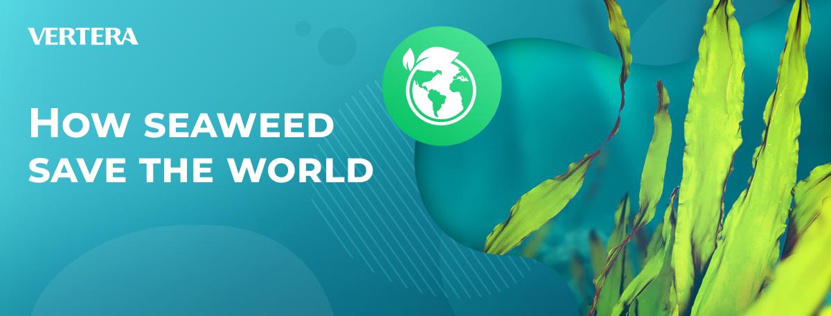 How seaweed save the world
