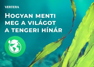 Hogyan menti meg a világot a tengeri hínár