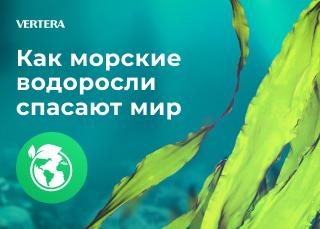 Как морские водоросли спасают мир
