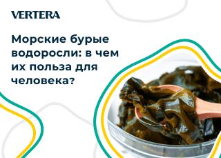 Морские бурые водоросли: в чем их польза для человека?